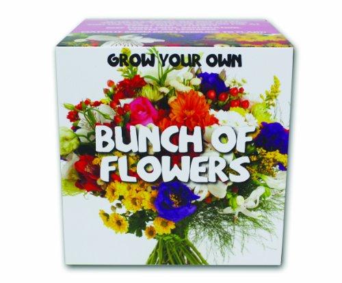 Galleria fotografica Gift Republic GR330019 Crescere il proprio bouquet