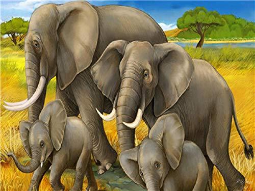 Elefanten Kit - NHJKKLLL Malen Nach Zahlen Erwachsene Kinder,