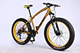 MYTNN Vélo VTT 26' 21 Vitesses Shimano Fat Tyre Gold 47 cm RH Snow Bike Fat Bike