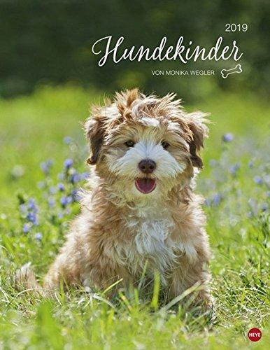 Hundekinder Posterkalender - Kalender 2019 (Welpen-kalender-kleine)