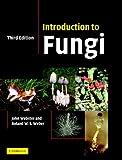 Introduction to Fungi (English Edition)