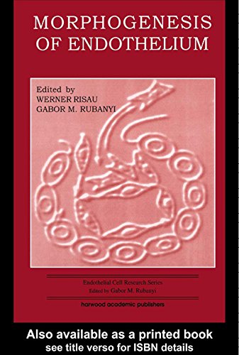 Morphogenesis Of Endothelium (endothelial Cell Research Series Book 8) por Werner Risau