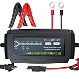 Deep Cell Battery Chargers Review and Comparison