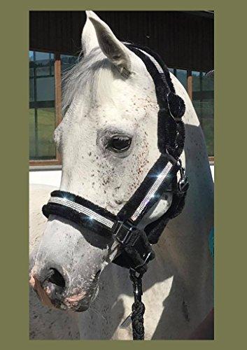 Meister Comfort Headcollar for Nobility, Travel, Stable Horse Headcollar Halter 7