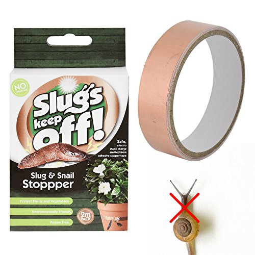 slugs-keep-off-slug-snail-stopper