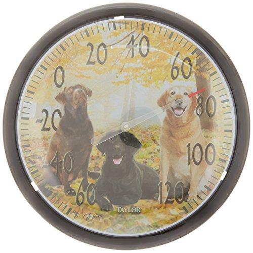 Taylor Bild Galerie Labrador Thermometer, schwarz & gelb -