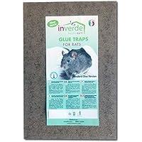 Plaques de glu en bois anti souris anti rat lot de 2 pièges - 19x28cm