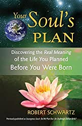 Your Soul's Plan: Discovering the Real Meaning of the Life You Planned Before You Were Born by Robert Schwartz(2009-03-24)