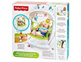 Baby Products Swings & Chair Bouncers