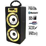Genius Factory® Altavoz Portátil Bluetooth Audio Playeral funcion de Radio FM, Lector tarjetas SD, entrada USB, control de volumen, Line-in, con luces LED (ORO)