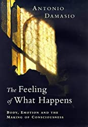 The Feeling of What Happens: Body, Emotion and the Making of Consciousness by Antonio R. Damasio (2000-01-20)