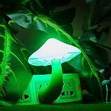 Etbotu LED Kleine Portable Pilz Lampe Schönheit Nacht Licht Lava Lampen Farbe: Grün