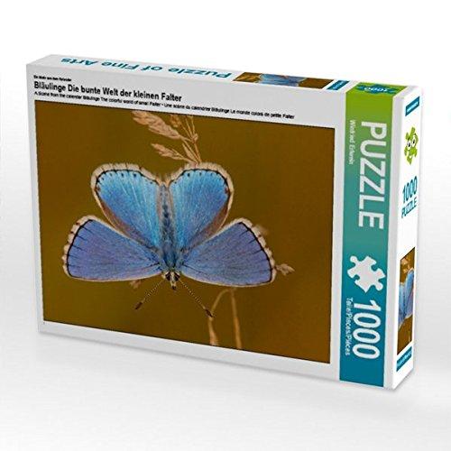 Ein Motiv aus dem Kalender Bläulinge Die bunte Welt der kleinen Falter 1000 Teile Puzzle quer (CALVENDO Tiere)