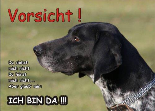INDIGOS UG - Türschild FunSchild - SE429 DIN A4 ACHTUNG Hund DEUTSCH KURZHAAR - für Käfig, Zwinger, Haustier, Tür, Tier, Aquarium - aus hochwertigem Alu-Dibond beschriftet sehr stabil