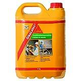 Sika sika latex - Emulsión adhesivo/a latex blanco garrafa 5kg