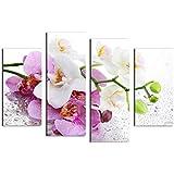 KING DO WAY Senza Telaio Quadro Moderno di Soggiorno Pittura Olio da Appendere Fiore Dipinto Stampato Quadro su Tela da Camera Orchidea Senza Cornice 4pz 30cmX60cm-30cmX80cm
