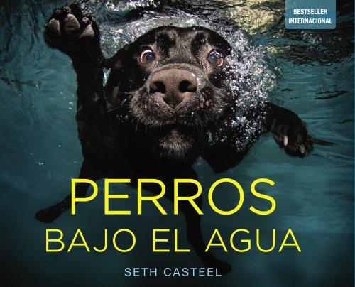 Perros bajo el agua (Photoclub)