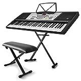 """Keyboard-Set """"Keybiza"""" Ibiza MEK6100 Clavier numérique 61 touches (100 sons ..."""