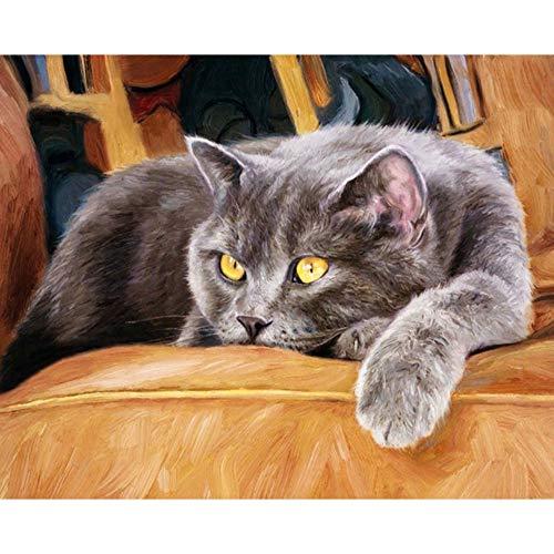 GCQBLM Katze Sofa Nachmittag Tier DIY Digital Malen nach Zahlen Moderne Wandkunst Leinwand Malerei Einzigartiges Geschenk Wohnkultur Rahmenlose 16X20 Zoll - Nachmittags Leinwand