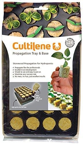 Cultilène Gefüllte Saatschalen mit 24 Zellen für die Aufzucht von Saatgut oder Stecklingen, transparent, 27.5x41x4.81 cm, 12-550-115