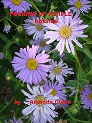 PUSHING UP PURPLE DAISIES (Teddy Books Book 1)