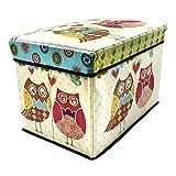 Sterling Foldable Ottoman Storage Box Cum Stool - Owl Print Pattern Foldable Stool