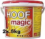 Biotin für Pferde mit Zink Kupfer Vitamin B6 und Mehr - Fördert Hufwachstum und Hornqualität 2X 5kg für je ca. 200 Tage - Premium Biotin-Pellets zur Nahrungsergänzung. Zusatzfutter für Pferde
