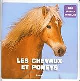 LES CHEVAUX ET LES PONEYS (Coll.