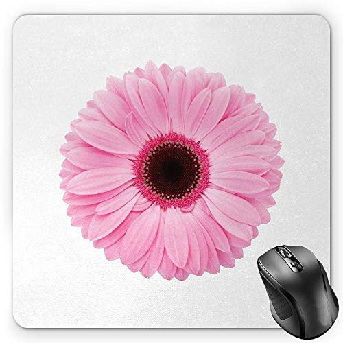 Pink and White Mouse Pad, Fresh Gerber Daisy Garden Plants of Spring Growth Single Flower Image Gaming Mousepad Office Mouse Mat Pale Pink White
