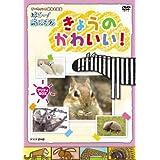 Kyouno Kawaii! Pretty Box [09