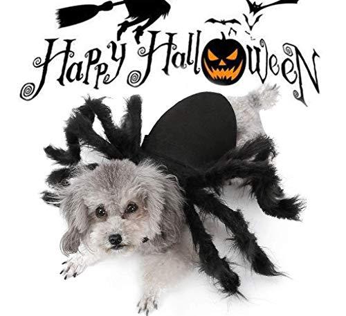 HAMISS Costume d'halloween pour Chiens et Chats en Fourrure géante Simulation araignée Costumes Cosplay Halloween Accessoires de décoration pour Chiens Chiots Chats M