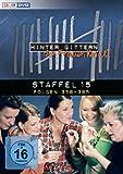 Hinter Gittern - Staffel 15 [6 DVDs]
