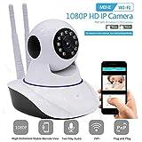 Best Electronic Arts Baby Monitors - AUTOECHO 720P IP Camera WiFi HD Wireless Cam Review