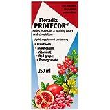 Floradix Protecor Liquid Formula 250ml