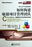 Coaching Agile Teams:A Companion for ScrumMasters, Agile Coaches, and Project Managers in Transition (Chinese Edition)