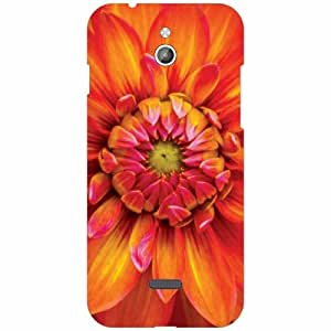 Infocus M2 Printed Mobile Back Cover