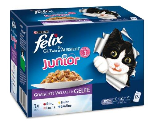 katzeninfo24.de Felix So gut wie es aussieht Junior 12er-Multpacks (Rind, Huhn, Lachs, Sardine) 12x100g, Katzenfutter von Purina, 3er Pack (3 x 1.2 kg)
