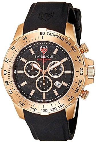 Swiss Eagle SE-9065-05 Men's Watch image.