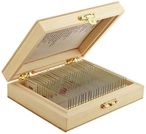 Ps25w 25 de vidrio preparadas para microscopio con la caja de madera