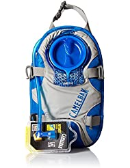 Camelbak 61614-IN Poche à eau Frost Grey/Turkish Sea 2 L