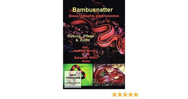 Bambusnatter Dvd Informationsfilm Amazon De S Kuhn Heller A