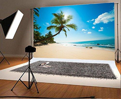 YongFoto Fotohintergrund, 4x3 m, Vinyl, Strand, am Strand, blauer Himmel, weiße Wolken, Palmen für Fotografie, Party, Hawaii, Luau-Szenen-Set, persönliches Porträt, Fotohintergrund, Studio-Requisiten