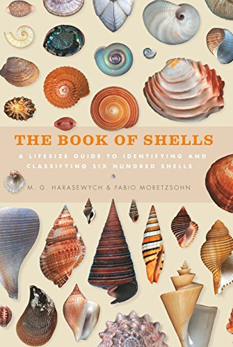 The Book of Shells: A life-size guide to identifying and classifying six hundred shells