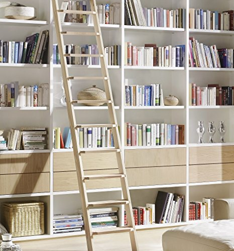 Intercon Maxi Work Ladder 11 Step 240 cm High 3 Different Colours