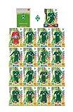 Match Attax Bundesliga 2017 2018 - SV Werder Bremen Mannschafts-Set 18 Karten Basiskarten Clubkarte Starspieler - Deutsche Ausgabe