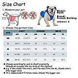 SymbolLife Kühlweste für Hunde Vest Selbstkühlend Atmungsaktiv Blau/Gelb (XL, Gelb) - 2