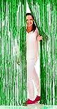 Folat Folien-Schimmer-Vorhang,Grün 1x 2m