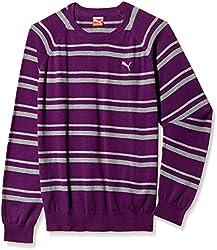 Puma Mens Cotton Sweater (4053985467388) _Plum_S