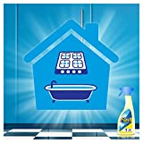 Flash Kitchen with Fairy Fresh Citrus Spray Removes Up to 100 Percent of Dirt, Grease and Grime, 500 ml