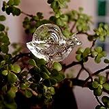 TAOtTAO Für Gartenpflanze Bewässerungsvorrichtung Indoor Automatische Nette Schnecke Swan Glass